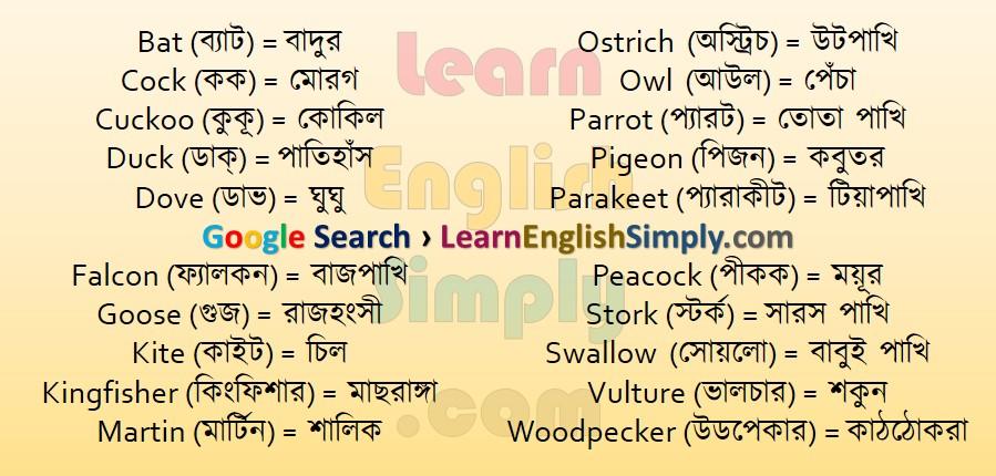 Vocabulary Bird