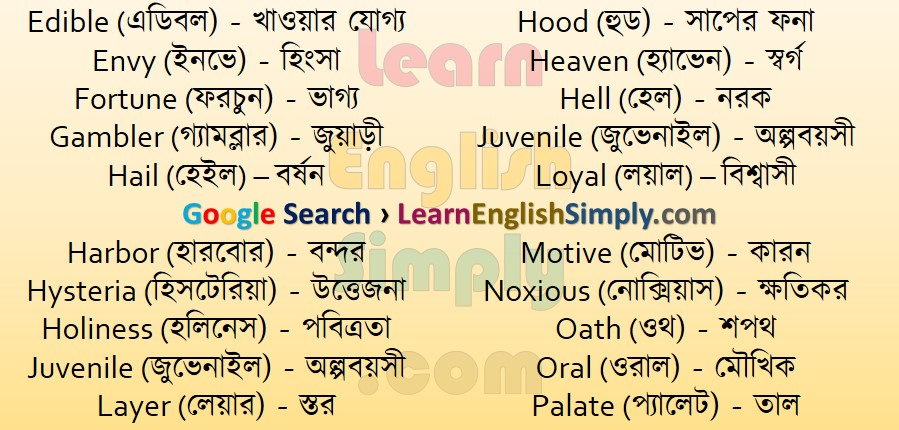 Vocabulary Part 42